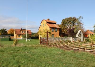 Gotlandsbyggen Annas Noje - 14