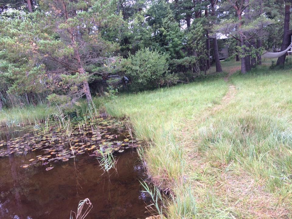 Idag har vi varit på Fårö och inspekterat fritidshuset på Marpes som Gotlandsb... 4